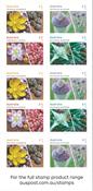 Australia - Succulent plants - Mint booklet