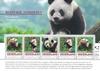 Holland - Panda bjørne - Flot ark med 5 frimærker