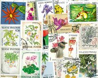 Fleurs - 100 timbres diff.