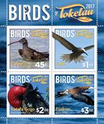 Tokelau - Birds of Tokelau - Mint souvenir sheet