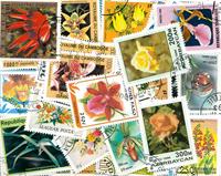 Blomster- 100 forskellige