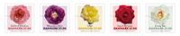 Denmark - Roses - Mint strip of 5