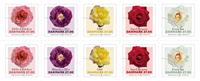 Denmark - Roses - Mint strip of 10