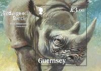 Guernesey - Endangered species / Rhinocéros noir - Bloc-feuillet neuf