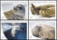 Antarctique Australien - Phoque crabier - Série neuve 4v