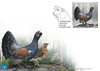 Estonia - Western capercaillie - First Day Cover