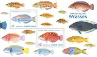 Îles Norfolk - Labridae - Bloc-feuillet neuf