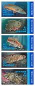Sverige - Nordiske fisk - Postfrisk hæfte 5v