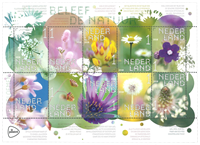 Netherlands - The nature in spring: Wild flowers - Mint souvenir sheet