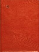 Indstiksbog - 48 sorte sider - Læder