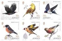 泽西岛新邮 2018纽系中国鸟类套票6枚 动物 生态自然 - 新票套票6枚