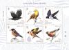 Jersey - Oiseaux, Amitiés avec la Chine - Bloc-feuillet neuf 6v