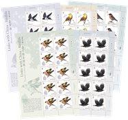 泽西岛新邮 2018纽系中国鸟类小版票 动物 自然 生态 - 新票套票 版票