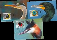 Liechtenstein - Photographie artistique, yeux d'oiseau - Cartes Maximum