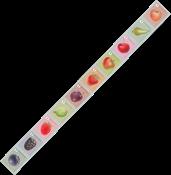 Belgique - Fruits - Série neuve 10v