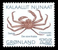 Grønland - Kurserende frimærke udsendt i hæfte med  ændret inskription *opilio*