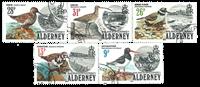 Aurigny - Oiseaux 1984 - Oblitéré