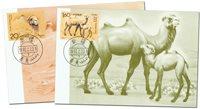 Kina - Kameler - Flot sæt maxikort