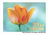 Suède - Tulipe Orange - Timbre neuf de rouleau