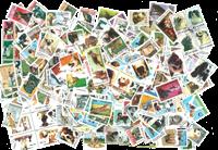 250 chiens