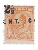 Suriname 1892 - NVPH 21 no gum as issued - Postfrisk, ingen gummiering