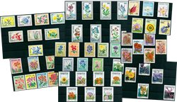 Fleurs - Paquet de timbres thématiques neufs