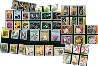 Orchidées - Paquet de timbres thématiques neufs