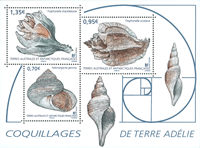 French Antarctic - Shells - Mint souvenir sheet