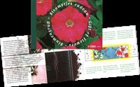 Pays-Bas - Fleurs - Carnet de prestige avec graines de fleurs