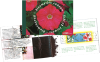 Netherlands - Flowers - Prestige booklet mint with flower seeds