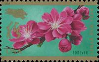 USA - Jaar van het Varken - Postfrisse postzegel zelfkl.