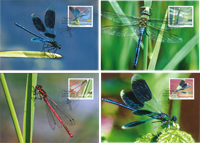 Liechtenstein - Odonates, insects - Maxi Cards
