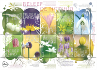 Netherlands - Spring flowers - Mint souvenir sheet