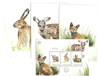 Netherlands - Forest animals - Post cards
