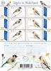 Holland - Europa Fugle - Postfrisk ark