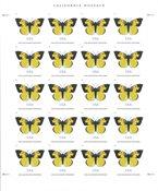 Etats-Unis - California Dogface sa / n SHL - Feuillet neuf- max. 20 timbres