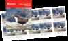Noorwegen - Europa 2019 Vogels - Postfris boekje