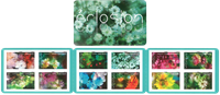 Frankrig - Havens blomster - Postfrisk frimærkehæfte