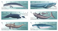 Namibia - Balene - serie nuova 6 val.