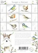 Netherlands - Garden Birds in Holland - Mint souvenir sheet
