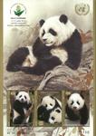 Nations Unies - Bloc-feuillet Exposition de Wuhan Chine  2019, pandas - neuf
