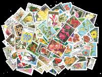 100张不同有关花类的邮票