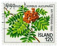 Island - AFA 555 - Stemplet